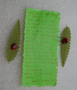 Ladybug Note | Fairy Project Blog | GardenFairies.ca