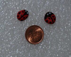 Ladybugs | Fairy Project Blog | GardenFairies.ca