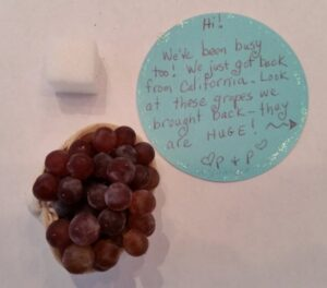When Life Gives You Grapes - Garden Fairy Project Blog - GardenFairies.ca